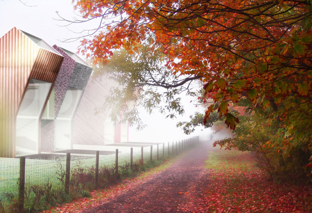 misty autumn001