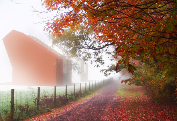 misty autumn002